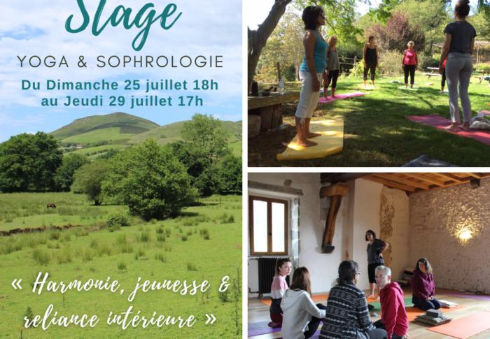 Stage Yoga & Sophrologie : harmonie, jeunesse et reliance intérieure